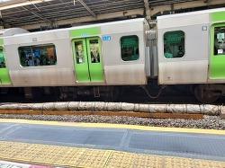 일본 전철의 스크린 도어.. 참 더디다 더뎌!!