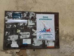 Vilnius 149_개와의 산책