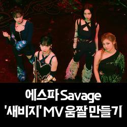 에스파 Savage '새비지' MV 움짤 만들기