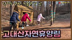 고대산자연휴양림 - 경기도 연천 1박 2일 가볼만한 곳