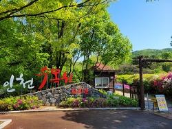 [인천가볼만한곳] 인천대공원 안에 위치한 인천수목원