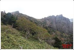 구상나무의 절규 - 한라산(2) (제주) - 2020.09.26
