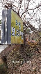 곤지암 화담숲  근처 보리밥 식당 초월 보리밥