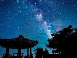 뮤지션 '요조'의 청춘 에세이: 반짝반짝, 우리들의 백스테이지 <천문학자는 별을 보지 않는다>를 읽고
