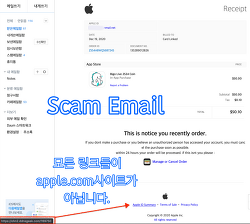 애플(Apple)를 사칭하는 사기 이메일 Scam Email