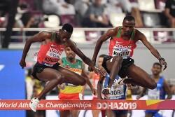 [올림픽 신기록] 한국 양궁 올림픽 9연패가 최고 기록?...10연패 바라보는 종목들