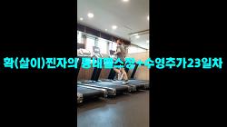 7월1일훈련ZIP-'확(살이)찐자의 동네헬쑤장23일차(수영추가)'