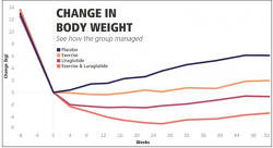 힘들게 감량한 체중, 유지하는 비결 Healthy Weight Loss Maintenance with Exercise, Liraglutide, or Both Combined