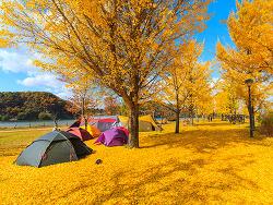 가을은 캠핑의 계절! 캠핑 초보자를 위한 필수 준비물부터 캠핑 스팟까지