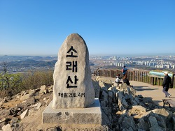 [인천가볼만한곳] 소래산 정상에 핀 복사꽃