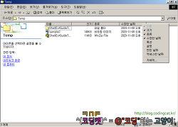Windows 쉘 익스텐션 개발 가이드 - (8) 자세히 모드 (1/2)