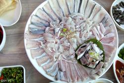 뼈째(세꼬시) 썰어먹어야 더 맛있다? 뼈째회가 맛있는 생선회들(3부)