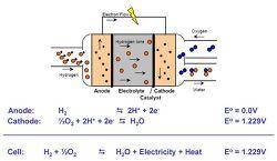 고분자 전해질 연료전지(Polymer Electrolyte Membrane Fuel Cell, PEMFC)