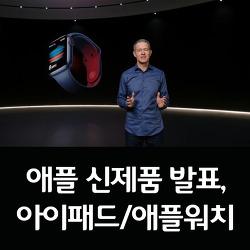 애플 신제품 발표, 아이패드 에어 4와 아이패드 8 그리고 애플워치6