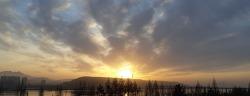 3월30일훈련ZIP-'날씨 멍멍 좋음'