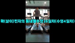 7월6일훈련ZIP-'확(살이)찐자의 동네헬쑤장26일차(수영4일차)'