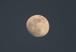 [202100524]5월 26일 개기월식을 앞두고 뜬 찌그러진 보름달