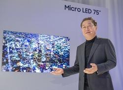 OLED TV 패스하려는 삼성전자, 예전의 소니를 기억하라