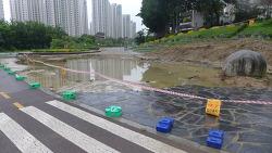 [20210704]장마 첫날 큰 물 지나간 흔적, 쌍개울 바닥 '쑥대밭'