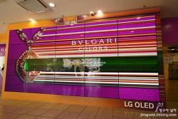 불가리 컬러 전시회에서 명품 보석과 LG 올레드 TV의 프리미엄 입지가 어울렸던 이유?