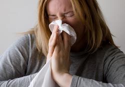 알레르기 유발 안하는 저자극성 개 고양이 있을까?