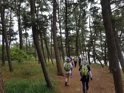 2020 소모임활동 - 걷기, 은평국 활동가 모임