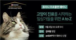 퓨리나, 고양이 진료 시작하는 이들을 위한 프로플랜 웨비나 개최