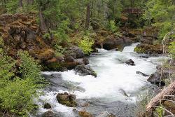 로그리버(Rogue River) 내츄럴브리지와 오레곤케이브(Oregon Caves) 준국립공원의 비지터센터