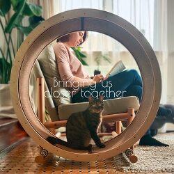 고양이 집사가 탐낼만한 고양이 운동 휠 일체형 안락의자