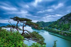 춘천 삼악산 소나무와 의암호 풍경