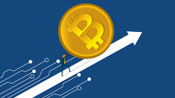 비트코인 기관 평균 매집 가격 확인 방법
