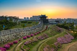 수원화성 동북포루(1)