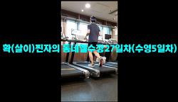 7월7일훈련ZIP-'확(살이)찐자의 동네헬쑤장27일차(수영5일차)'