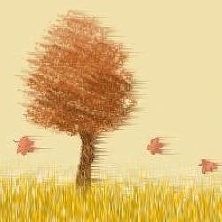 [10곡 이어듣기] 가을에 듣는 샹송 연주곡