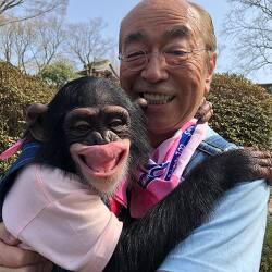 일본 유명 연예인 코로나 양성