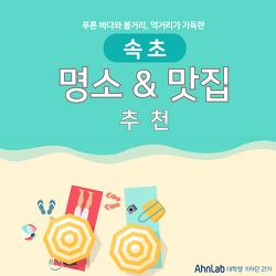 [카드뉴스]속초 명소&맛집 추천