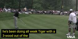 VIDEO: Tiger the Artist