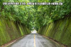 단양 사진찍기 좋은곳 추천, 이끼터널 및 선사유물전시관 수양개빛터널