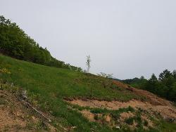 공동체 마을 토목 공사 시작(19. 5. 13)