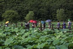 울산 숨겨진 관광지 회야댐 생태습지 1년에 한 달만 여행자의 방문을 허락하는 곳