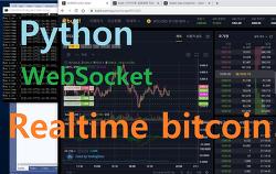 암호화폐. API. bybit. 실시간 시세수신. WebSocket. Python