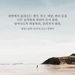 서울 수심결 강의 재연기 안내