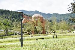 평창군 봉평면 메밀꽃필 무렵 효석문화제 풍경