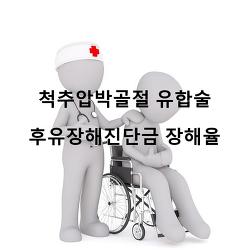 요추2번압박골절 유합술(고정술) 후유장해진단