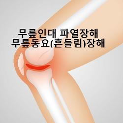십자인대파열로 인한 무릎관절 동요 장해