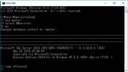 [SQL Server] sqlcmd로 간단한 쿼리 사용하기