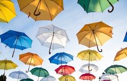 우산의 종류와 이야기 그리고 아이디어