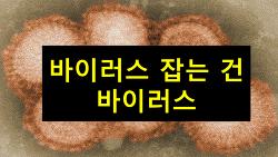 바이러스 대폭풍 동영상 유투브(바이오토크TV)