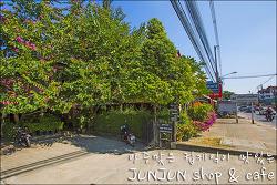 태국 치앙마이 컵케잌이 맛있는 준준카페 / JUNJUN SHOP&CAFE, Chiangmai, Thailand