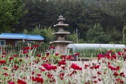 충남 서천 문화재 보물 제224호 성북리 오층석탑(비인 오층석탑)